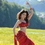 Tamanna,Allu Arjun New Stills From Badrinath Telugu Movie