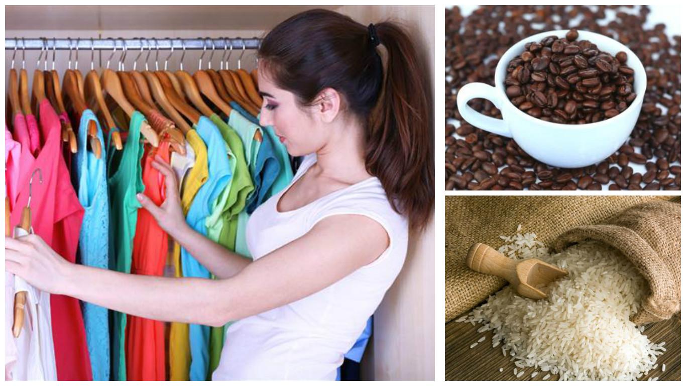 Mi ropa huele a humedad excellent trucos quitar olor - Como quitar la humedad de mi casa ...