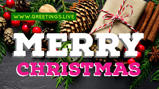 Merry Christmas photo messages