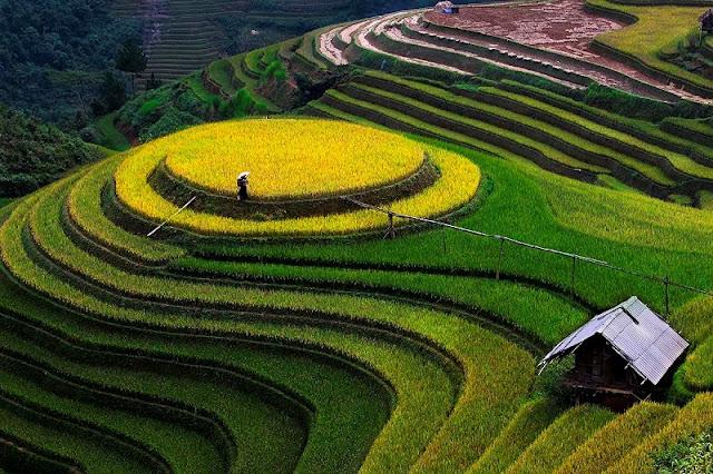 Yen Bai Province, an alluring destination in the northwest 1