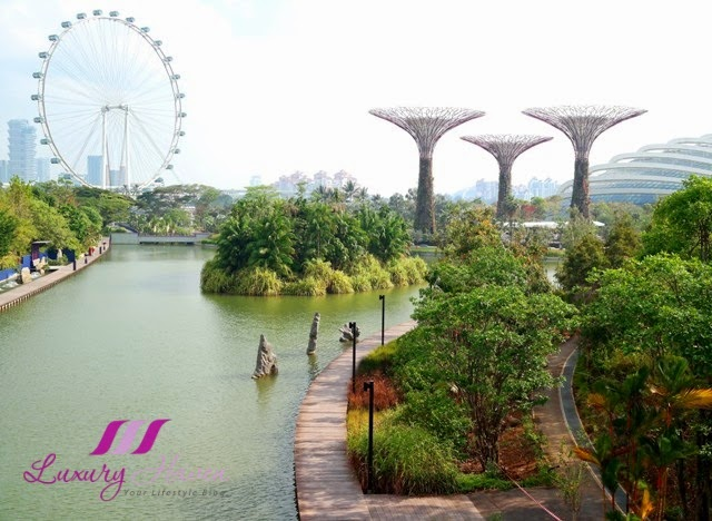 gardens by the bay supertree grove singapore flyer