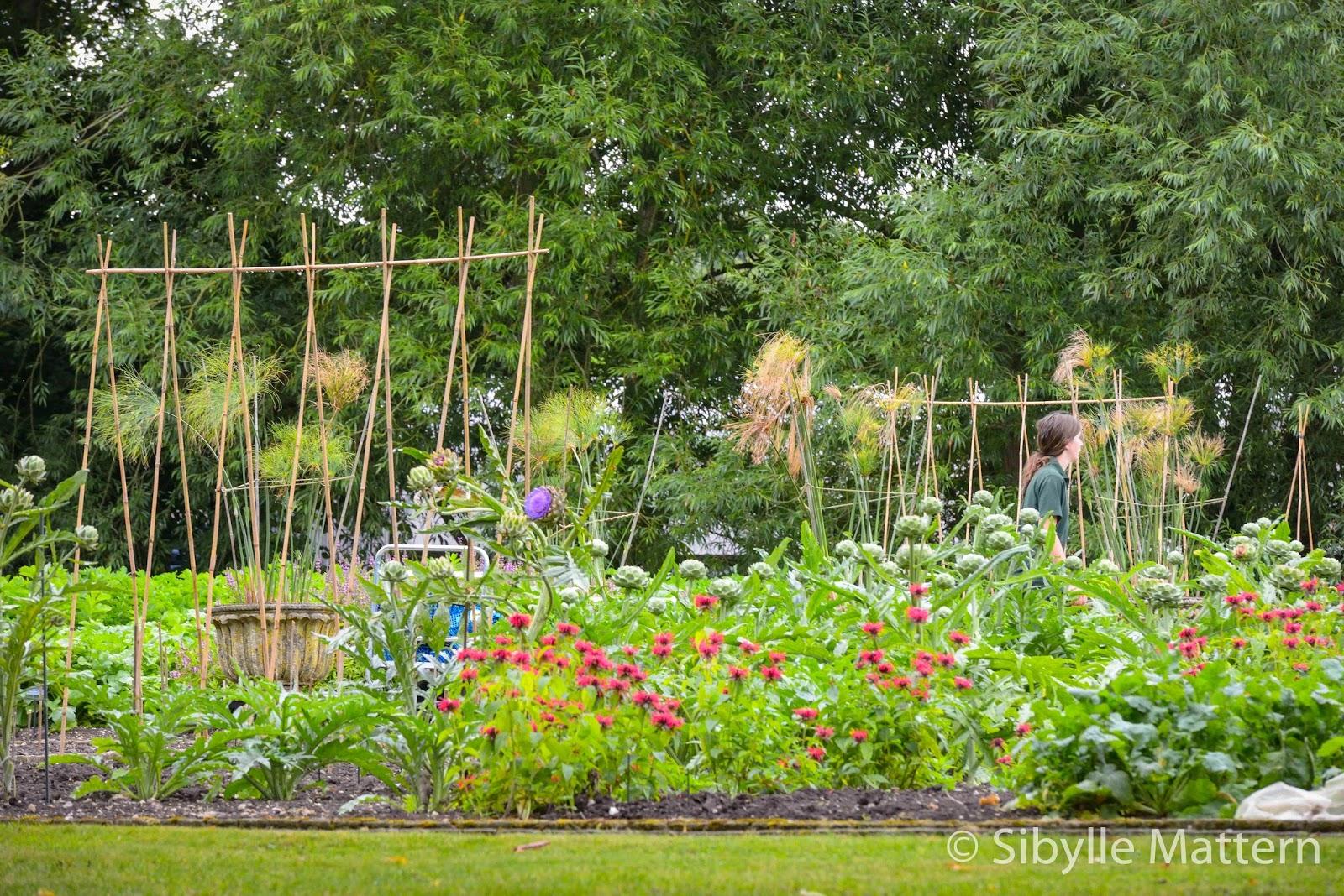 Kitchen Garden Blog Sibylles Blog Mohn Imagescom Garden Visit Le Manoir Aux Quat