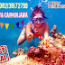 Jadwal Open Trip Karimunjawa Murah 2020