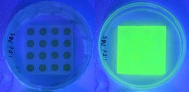 Imágenes del vendaje antes y después de entrar en contacto con las bacterias.