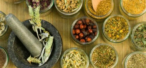 Feritility Blog: Fertility Herbs Part 1