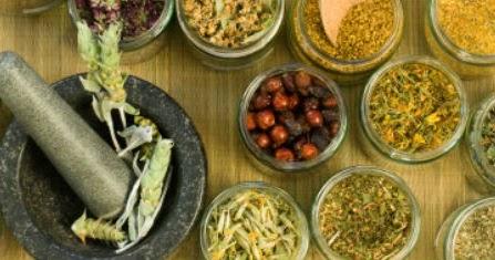 Feritility Blog: Fertility Herbs Part 4