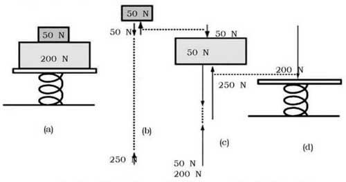Rumus Hukum 3 Newton