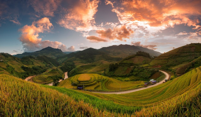 Now is the best time to see terraced rice fields in Mu Cang Chai, Vietnam