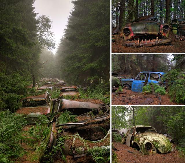 سيارات قديمة قامت الطبيعة بإحتلالها – بلجيكا