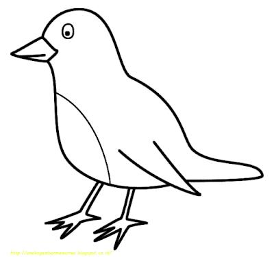 Gambar Mewarnai Burung - 14