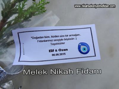 Elif Ozan Nikah Bitkisi İzmir 2