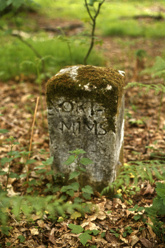 Photograph of a parish boundary marker in Leggatts estate (North Mymms side). Image from The Peter Miller Collection
