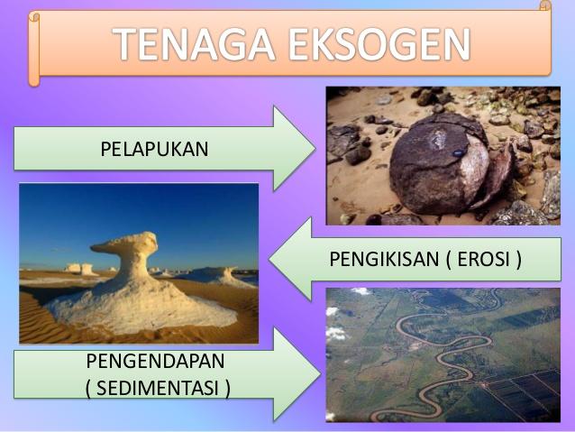 Apa yang dimaksud dengan energi eksogen dan endogen - Cari ...