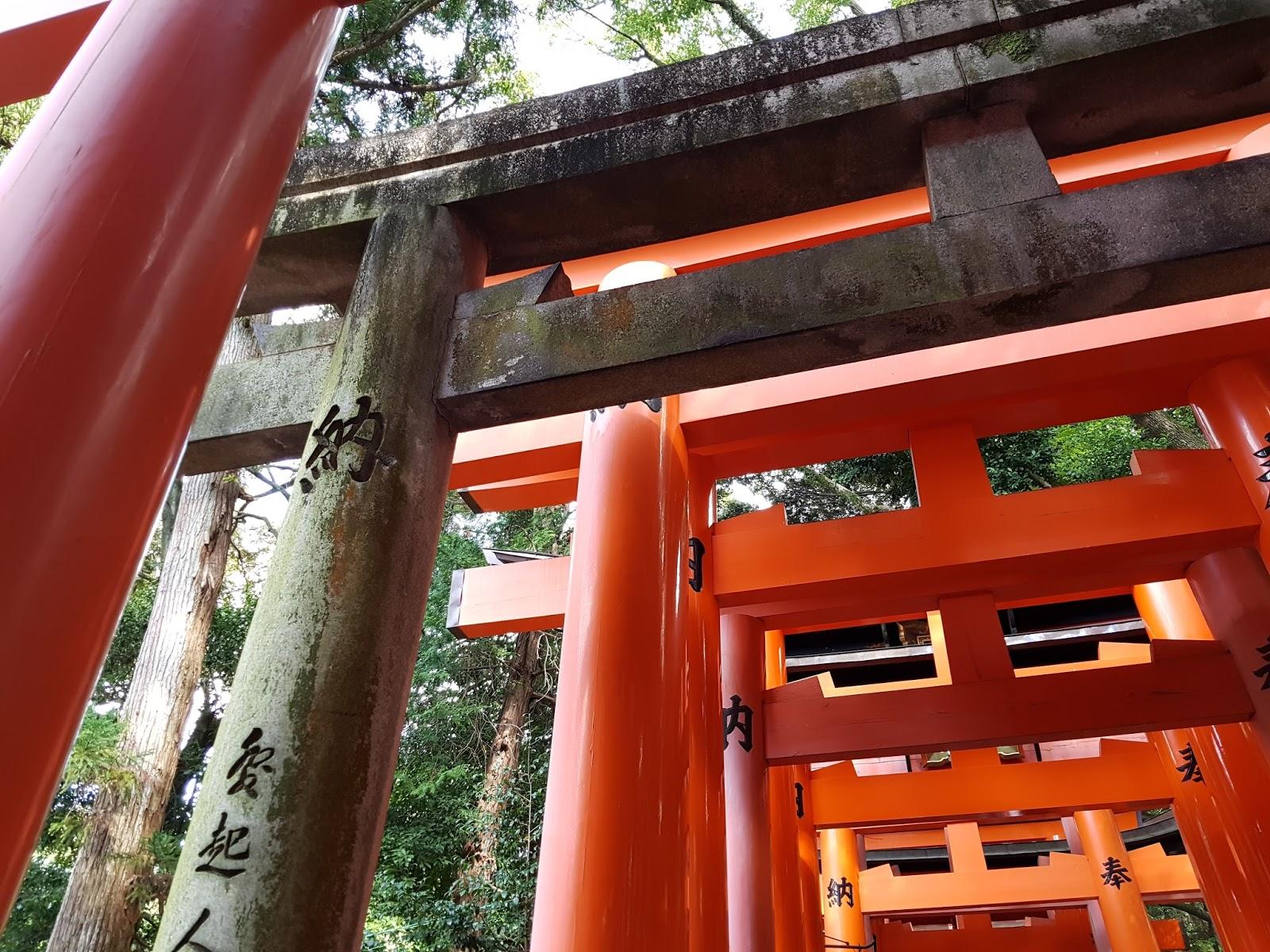 Fushimi Inari Stone Torii