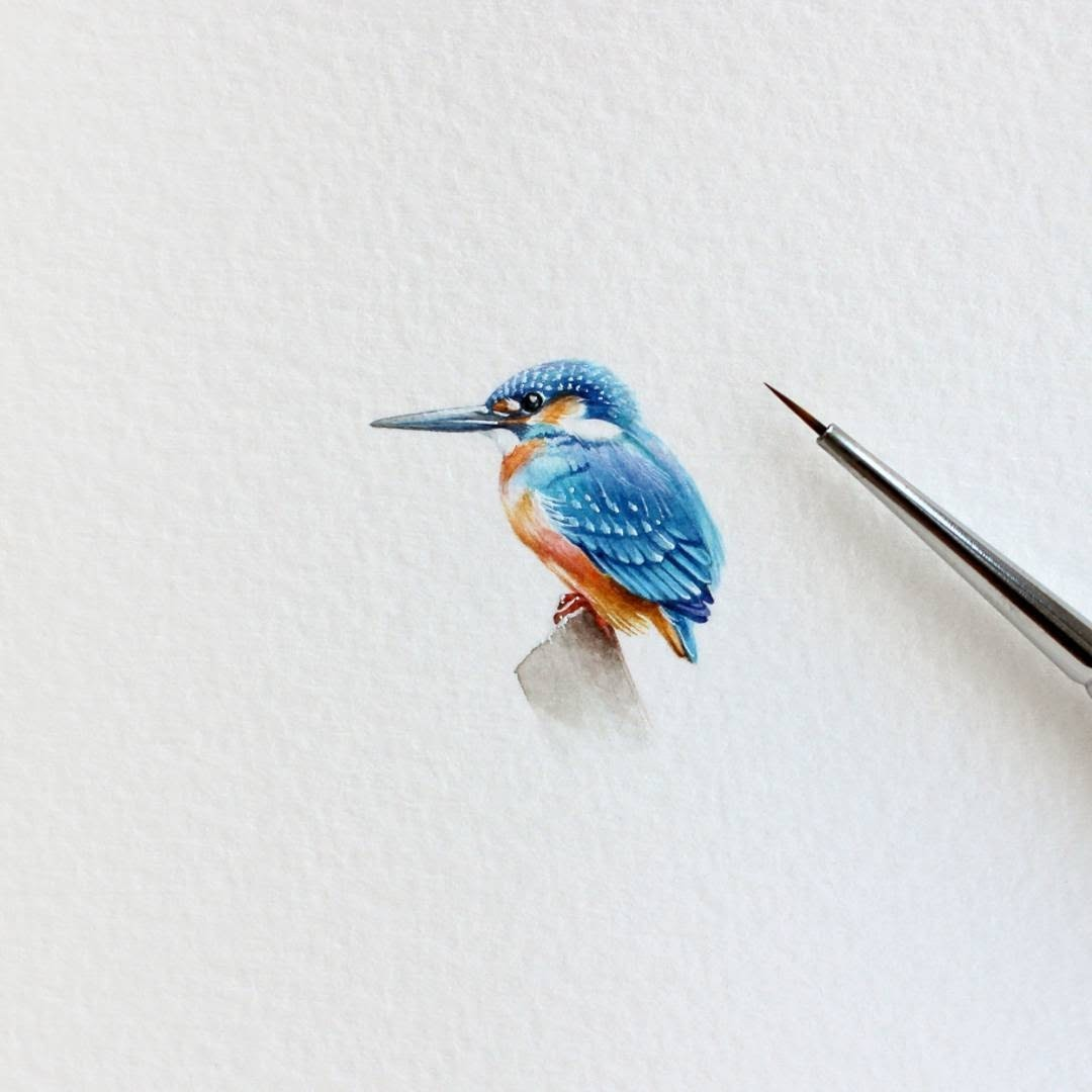 10-Kingfisher-Julia-Las-Miniature-3-cm-Paintings-of-Wild-Animals-www-designstack-co