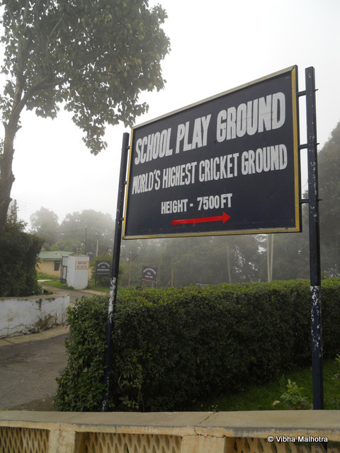 The World's Highest Cricket Ground, Chail. When seen from a purely tourist perspective, Chail doesn't have too much to do. However there are several hidden treasures that are worth exploring. One of them is the World's highest cricket ground. I have a suspicion that the place would have been quite dull if the weather wasn't so magical. The board indicating that this is indeed the world's highest cricket ground at 7500 feet from the sea level. The cricket ground is used by the Chail Military School. The ground was built in 1893 and is still frequently used and well-maintained. My family on the stairs leading to the Cricket Ground. Clouds had started gathering by now and the ground was barely visible. The cloud-curtain lifted for a second to allow us a view of the ground. We were surprised to see a basketball court as well. It is surprising then that this isn't the world's highest basketball court as well. A quick search on the Internet didn't reveal which basketball court gets the honour. And it is also worth mentioning here that this  ground is also used to play polo during the vacations. A beautiful bald tree with a tree-house. You need to walk around the cricket stadium a bit to reach this point. The cricket ground was on higher grounds when compared to the road we were walking on. I wish I had been able to click a better angle though. The inactive scoreboard. Honestly, when I was told about this cricket ground, I was expecting a stadium and not really just a ground. But anyways, the visit was worth the time so no complaints. The expanse of the playground surrounded by tall deodars. The light clouds drifting through these giants make the entire environment quite haunting. Playing cricket here would be so much fun. I wonder how many balls were hit too hard and lost to the game forever in the dense foliage surrounding the ground.