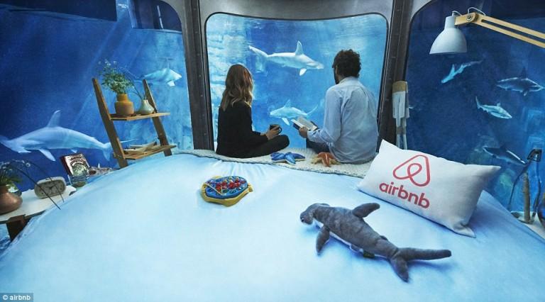 أول غرفة نوم تحت الماء بين أسماك القرش في فرنسا