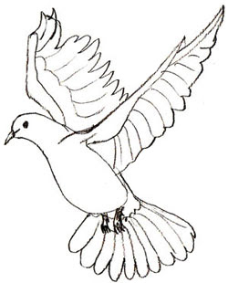 Cute Dove Coloring Pages