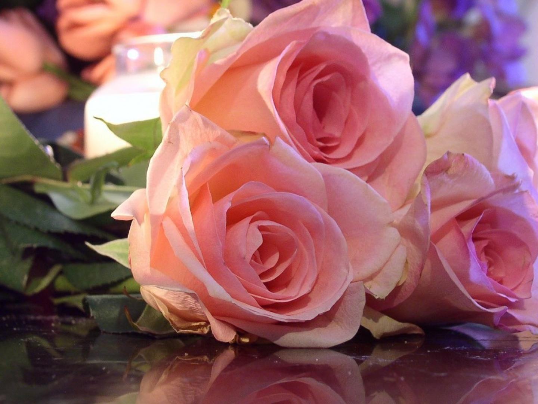 Paisajes de ensue o paisajes rosas - Fotos de rosas de colores ...
