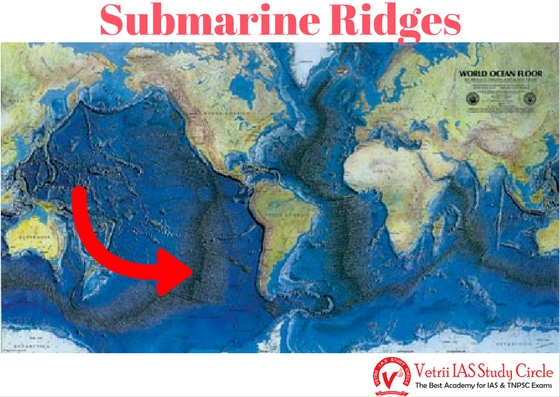 The relief of the ocean basins upsc tnpsc general knowledge the east pacific ridge and carlsberg ridge are some of the important submarine ridges sciox Gallery