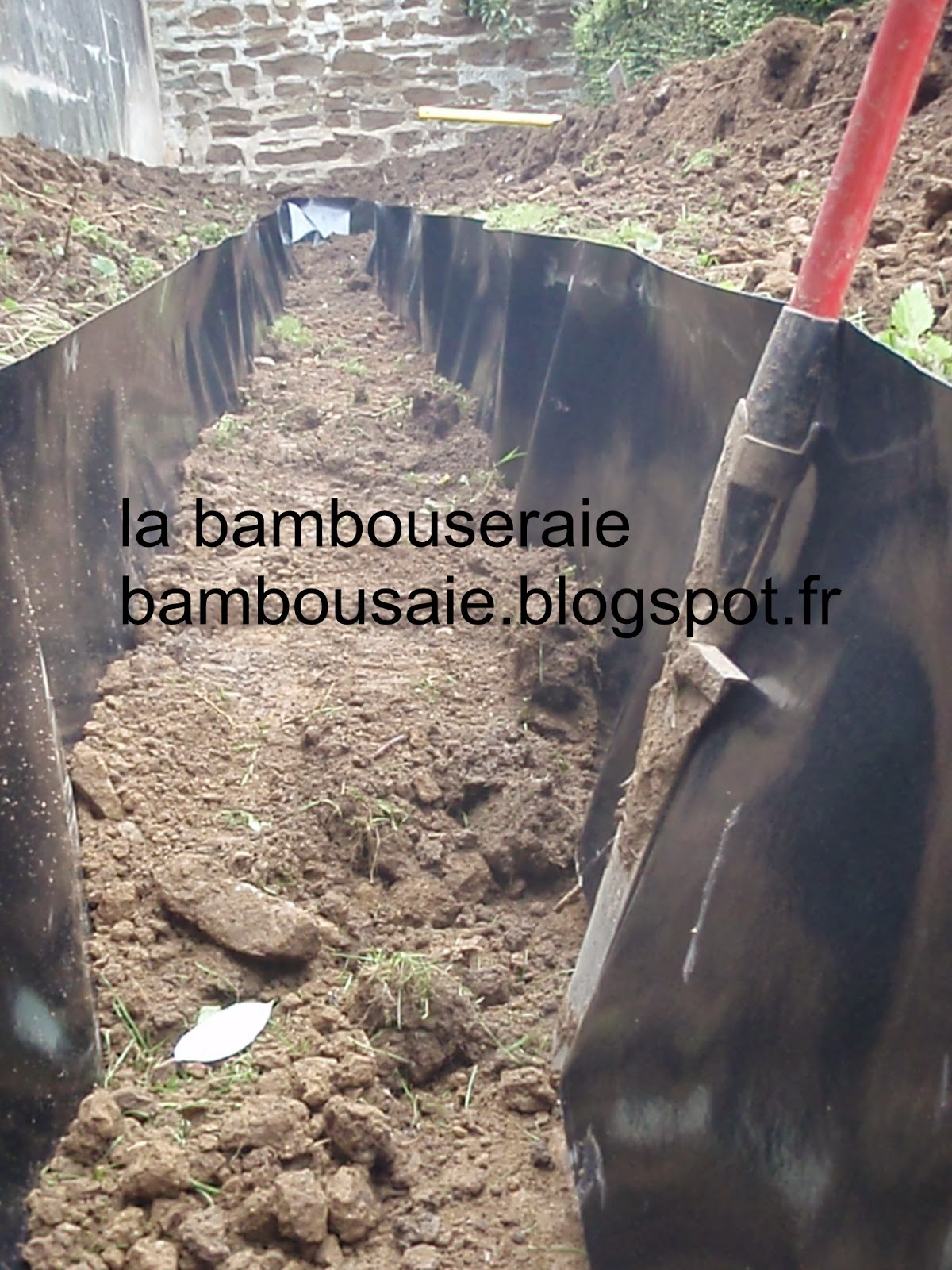 La bambouseraie pose d 39 une barri re anti rhizome - Bache anti rhizome ...