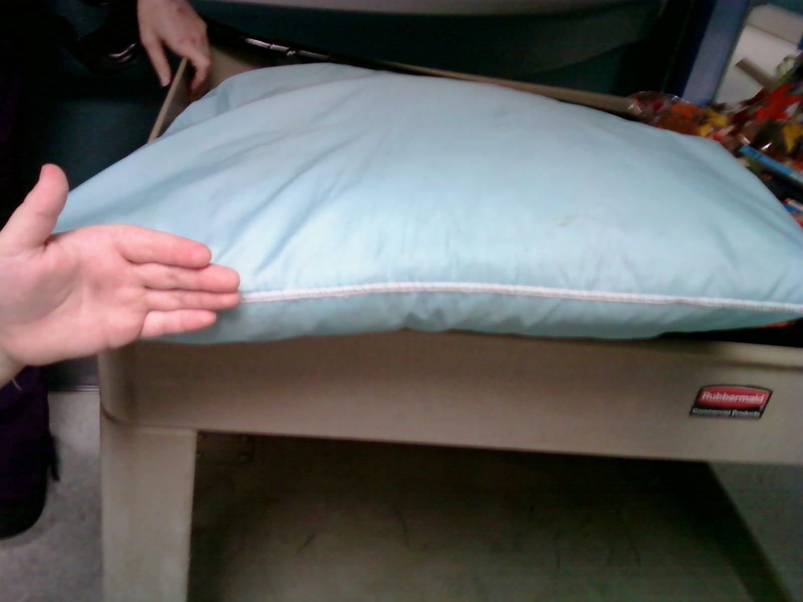Rowan S Story Quot Pillows For Parents Quot