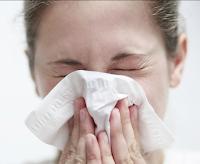 عشبة الجنسنج تعالج الإنفلونزا