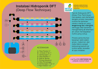 Jasa HIdroponik, Pelatihan Hidroponik, Sistem HIdroponik