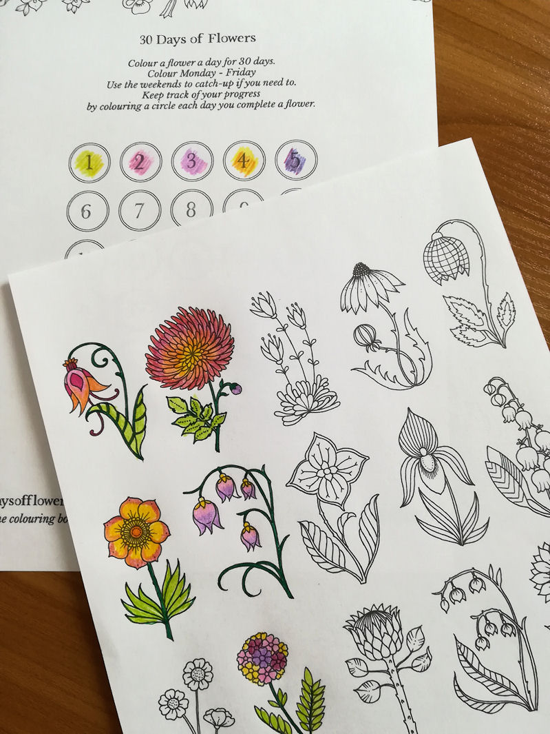 The challenge: Colour a flower a day, for 30 days. and Freebie !