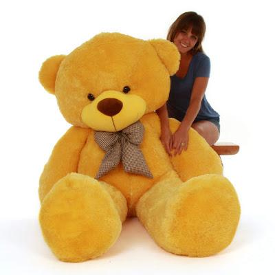 beautiful sunny yellow teddy bear
