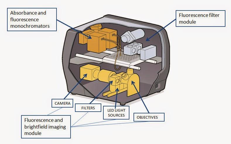 monochromator optics