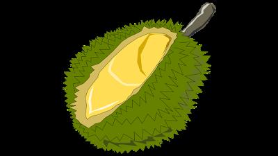 durian free clip art