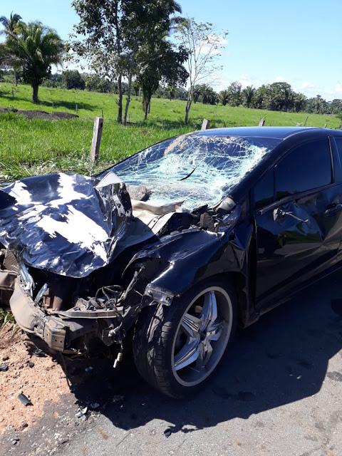 Vaca atravessa rodovia e causa impacto com veículo