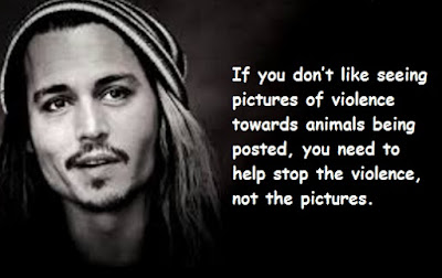 """Johnny Depp Quotes About Violence"""