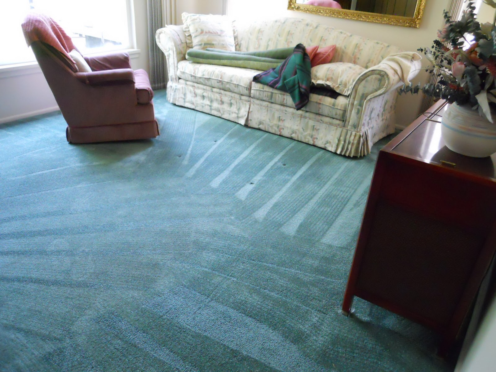 Cleaner Carpets Salt Lake City Carpet Vidalondon