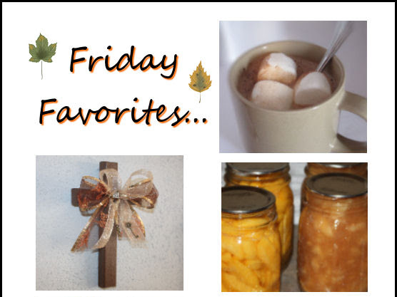 Friday Favorites... (9/13/13)