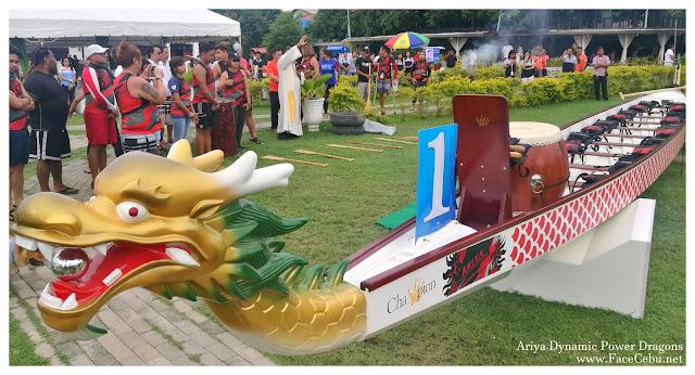 Ariya Dynamic Power Dragons