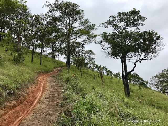 Trekking%2BTa%2BNang%2BPhan%2BDung%2B9 - Cung đường trekking Tà Năng - Phan Dũng ngày trở lại, mùa mưa 2016
