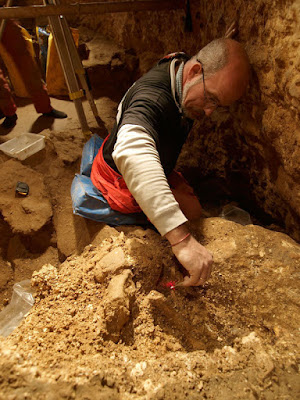 400,000-year-old fossils from Spain provide earliest genetic evidence of Neanderthals