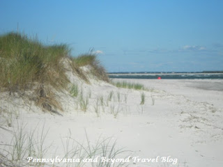 Sand Dunes in North Wildwood New Jersey