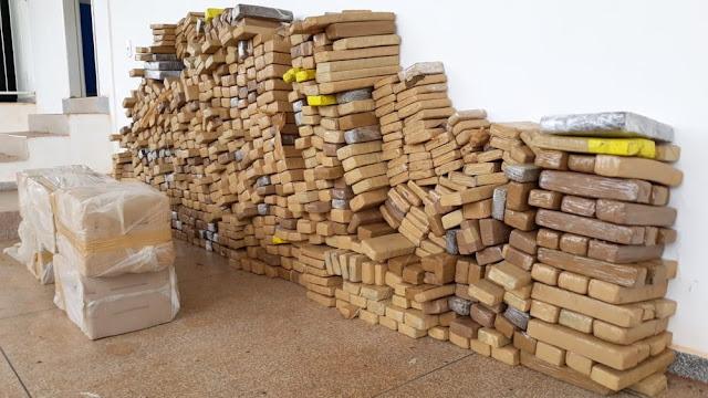 Mais de 740 kg de maconha são apreendidos em propriedade rural