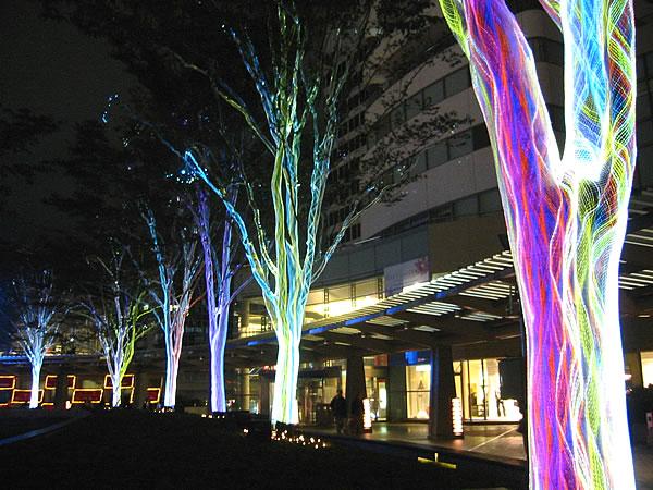 Shuwa Residence Tokyo: Location