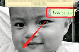 Cara membuat teks di coret pada Whatsapp