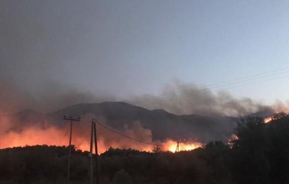 Κολαση πυρος στη Μανη: Κινδυνευσαν ζωες, καηκαν σπιτια -  Μαχη με τις φλογες [photos+video]