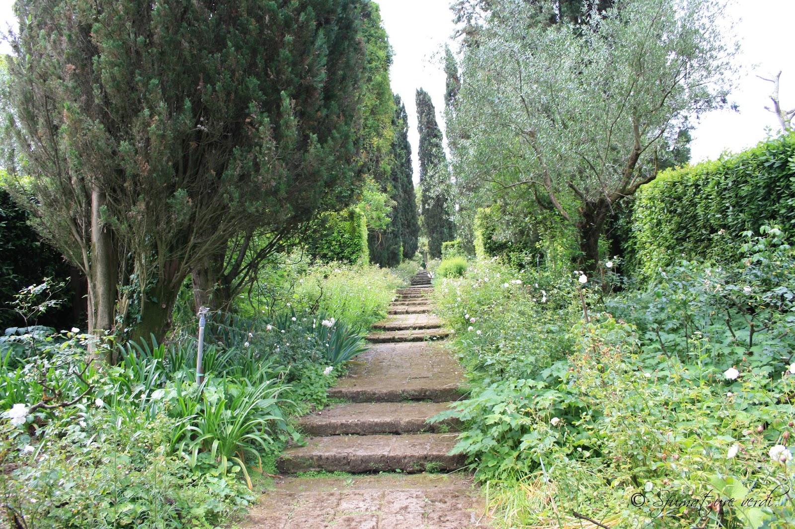 Siepi Miste Da Giardino i giardini della landriana | sfumature verdi