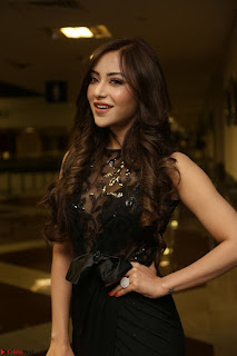 Angela Krislinzki in Transparent Black Gown at Rogue Movie Teaser Launch 1st March 2017 104.JPG