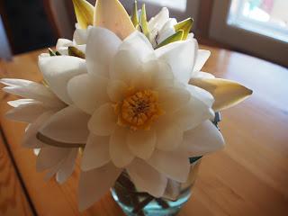 lumpeen kukka