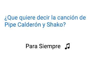 Pipe Calderón Shako Para Siempre Significado de la Canción.
