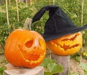 cool and easy pumpkin carving ideas