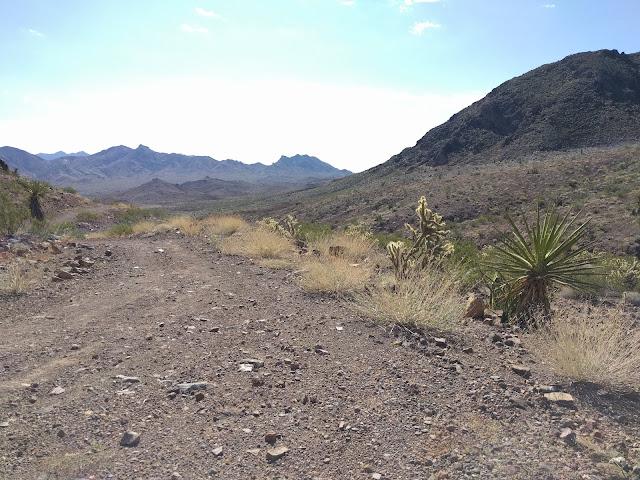 McCullough Hills Trail | Henderson, NV